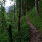 Wanderung auf den Seebergkopf (1.538m)