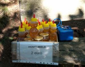 Süße Honigbärchen