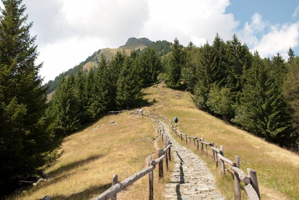 Ein Steinplattenweg mit Holzgeländer führt zur Mutspitze