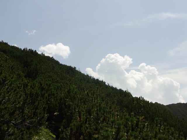 Die Wolken quellen, erste Vorzeichen des nahenden Gewitters