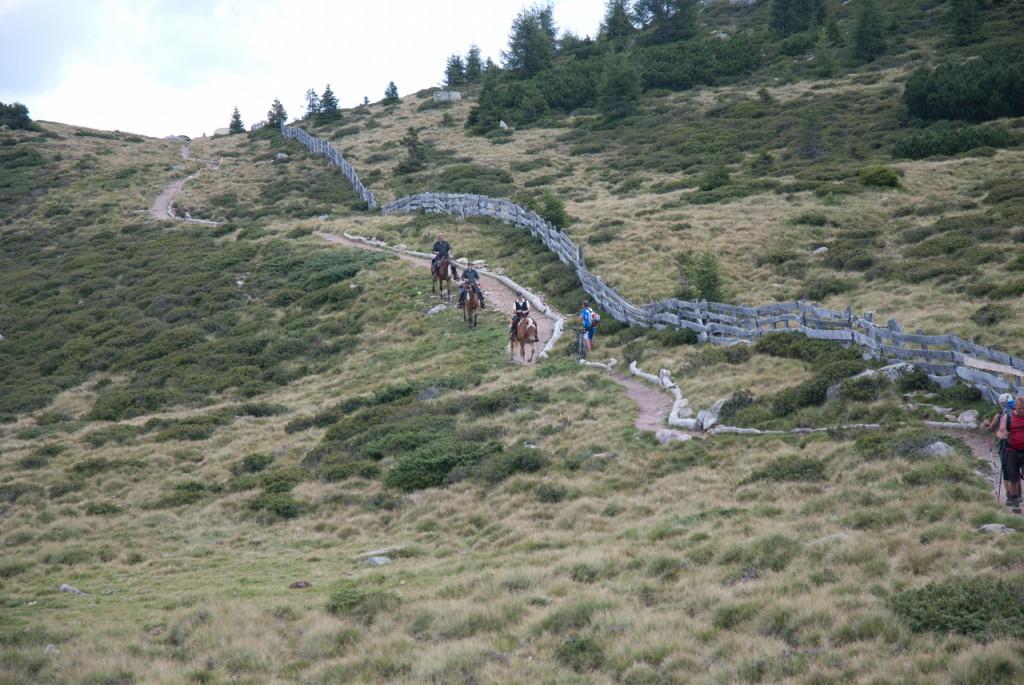 Wanderer, Mountainbiker und Reiter unterwegs