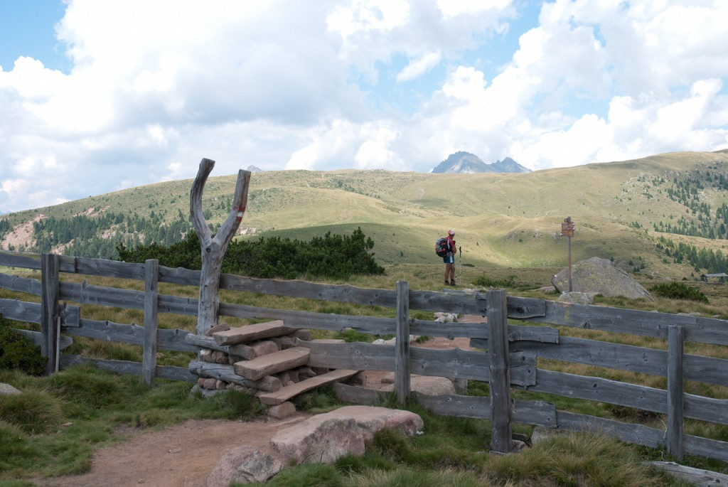 Über den Zaun zum Stoarnerne Mandln