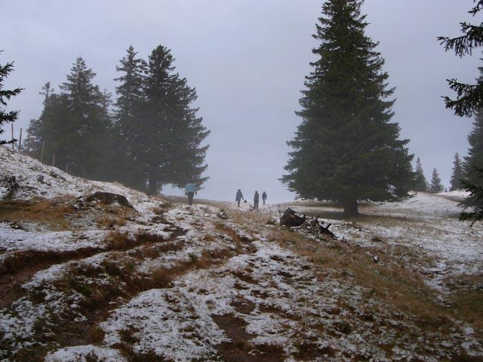 Im Schneenebel