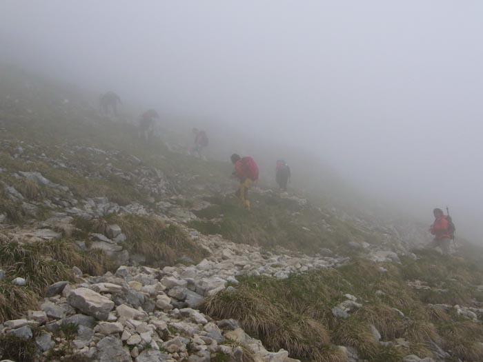 Outdoor Ladies im Nebel