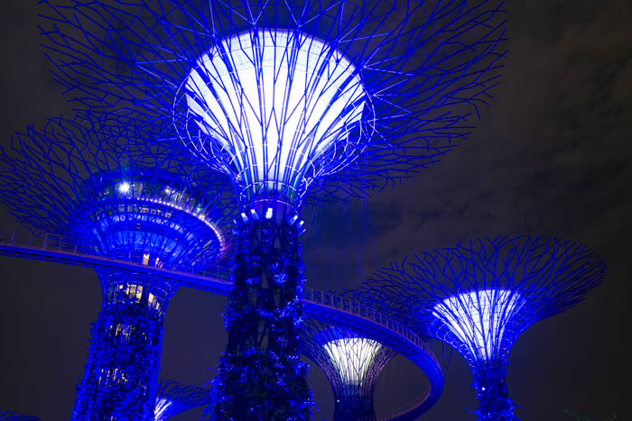 Foto der Woche #01 Gardens by the Bay
