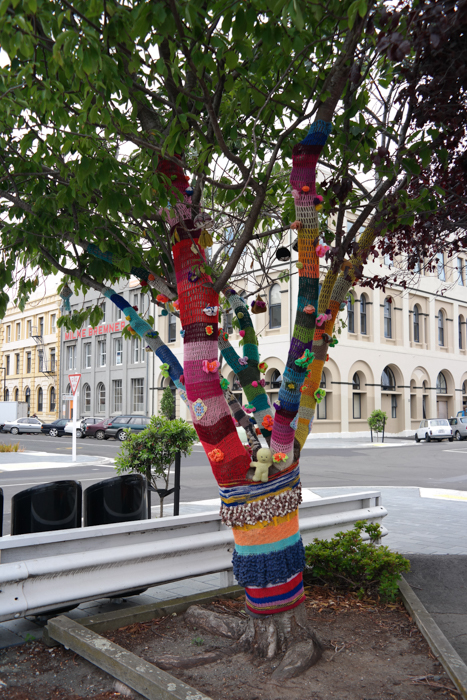 Guerilla Knitting in Dunedin: Ein Wollkleid für den Baum