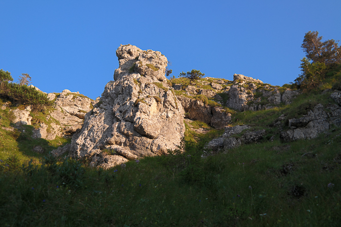 Felsen im Abendlicht