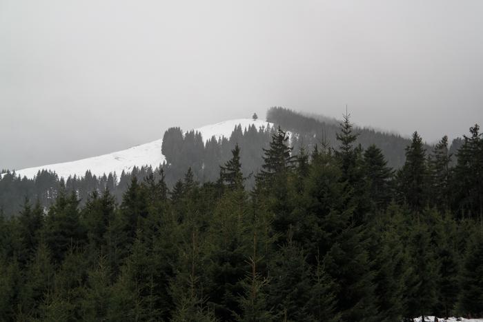 Zwiesel vom Blomberg aus gesehen