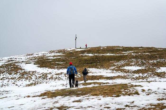 Über den Grashügel zum Heigelkopf-Gipfel
