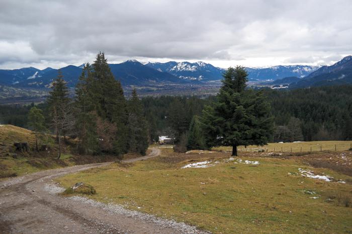 Breiter Wanderweg zum Blomberg
