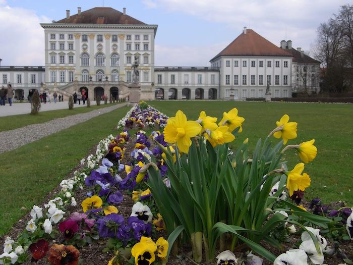Narzissen im Nymphenburger Schlosspark