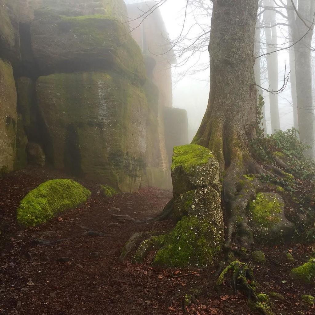 Kreuzweg um das Kloster Mont-Ste-Odile